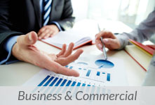 Small Business & Commercial Matters